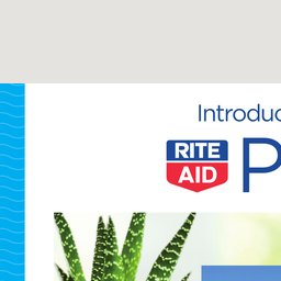 Rite Aid Weekly Ad | Rite Aid Weekly Circular | Rite Aid