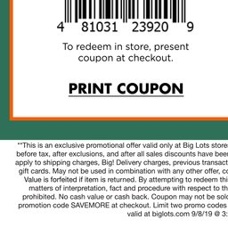 picture regarding Tuesday Morning Printable Coupon identify Massive Plenty: Weekly Advert