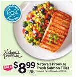 Nature's Promise Fresh Salmon Fillet