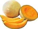 Jumbo Cantaloupe Melon