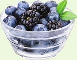 Organic Blueberries or Blackberries