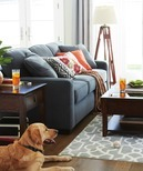 Fabric Possibilities Sofa